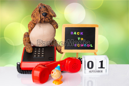 colorful equipment with funny dog and