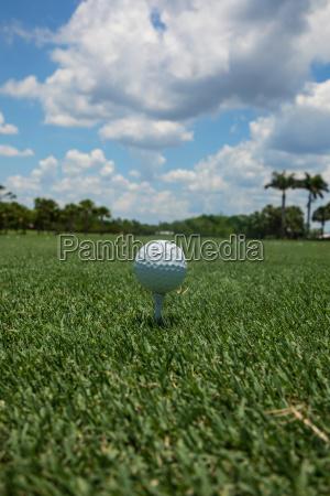 golf ball teed up on a