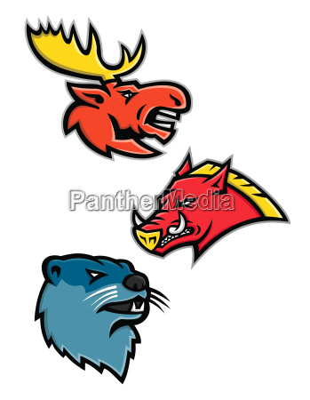 north american wildlife sports mascot collection