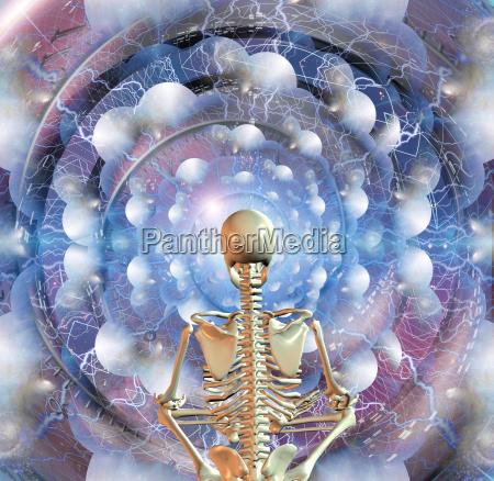 skeleton sits in pose of lotus