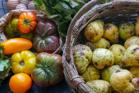 different rustic tomatoes and pears from