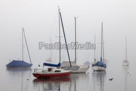 sailing ships in fog