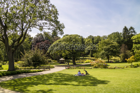 large english style park with well