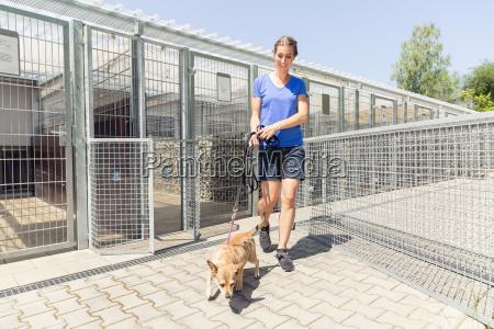 woman walking a dog in animal