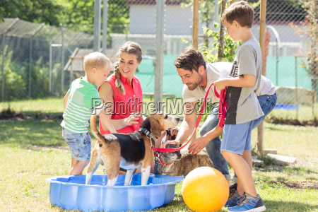 family playing with dog from animal