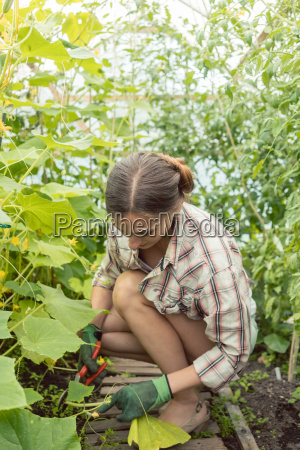 woman working in green house on