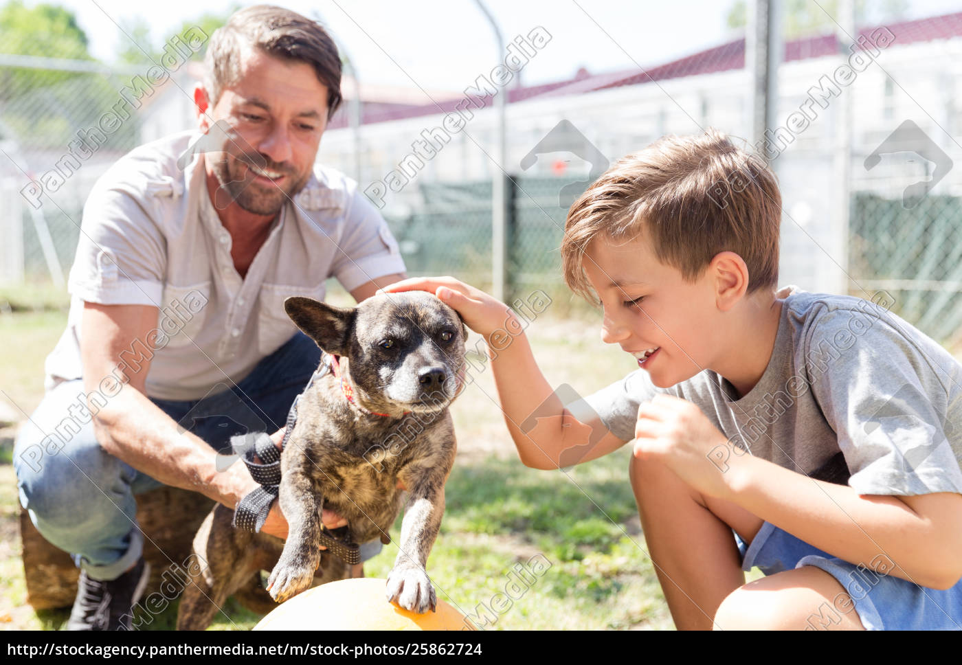 dad, and, his, son, taking, care - 25862724