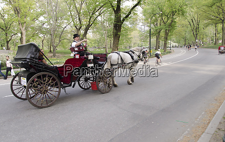 visit to central park by horse