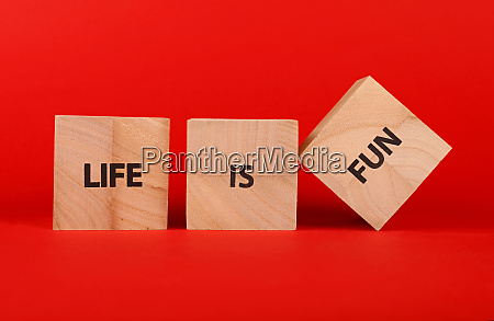 wooden cubes with life is fun