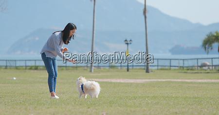 woman training with her pomeranian dog