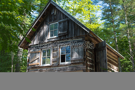 old forest hut