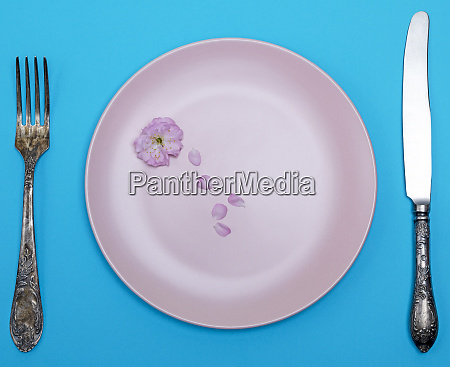 empty ceramic round pink plate and