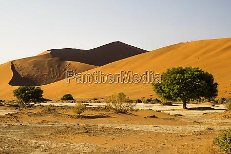 namibia namib sossusvlei national park