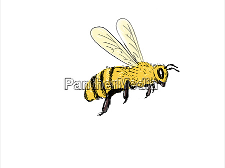 bee flying to side color drawing