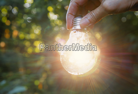 hand holding light bulbs with glowing