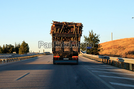 big truck with loaded wood on