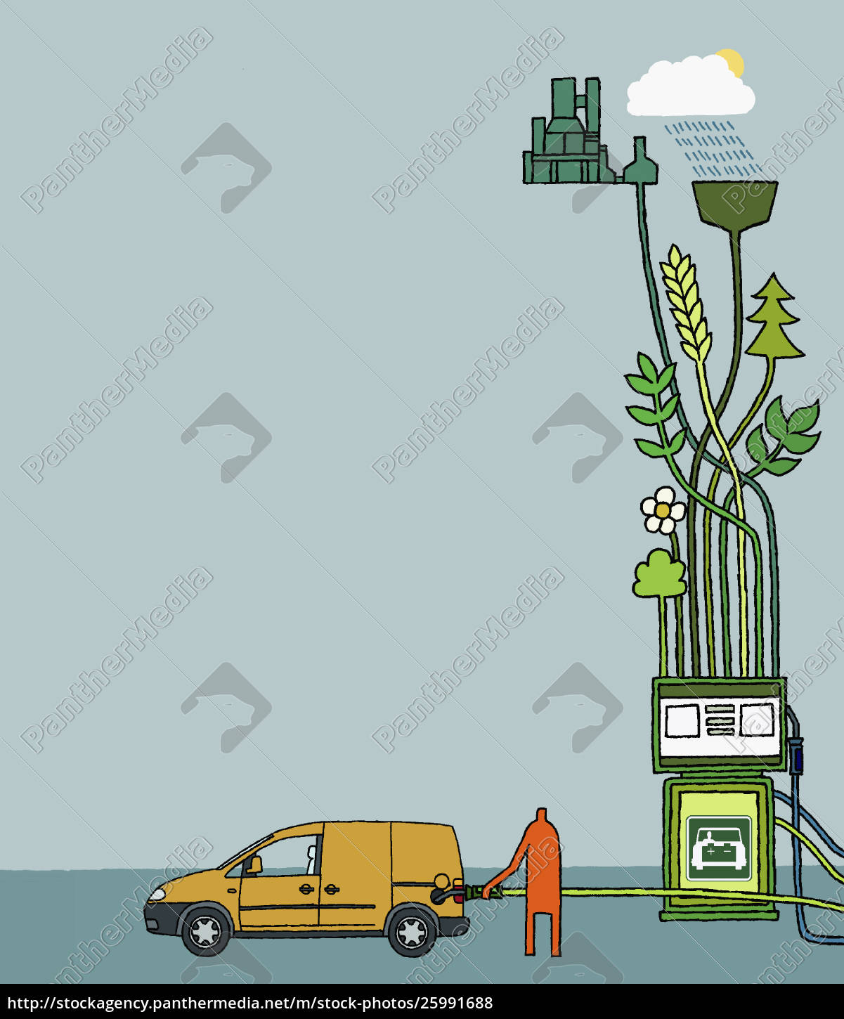person, filling, car, with, biofuel - 25991688