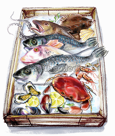 variation of fish and seafood on