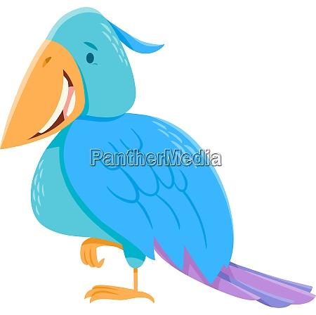funny colorful bird cartoon character