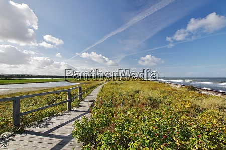 panoramic view from a scenic path