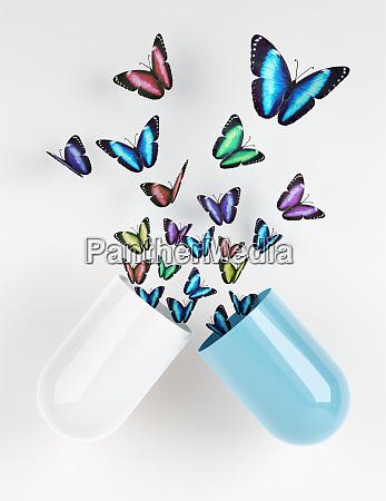 butterflies emerging from capsule