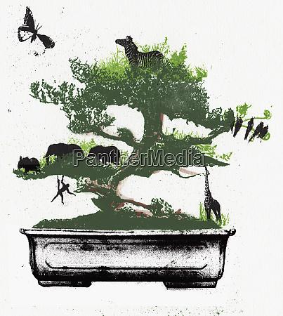 assorted animals in bonsai tree