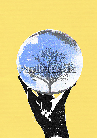 hand holding crystal ball with tree