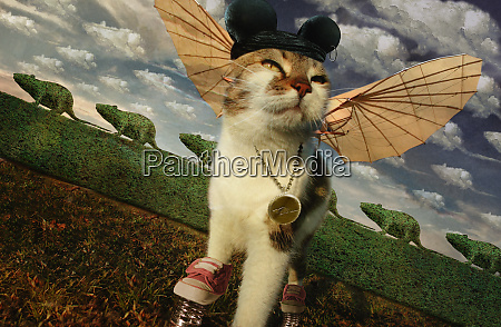 cat wearing winged costume