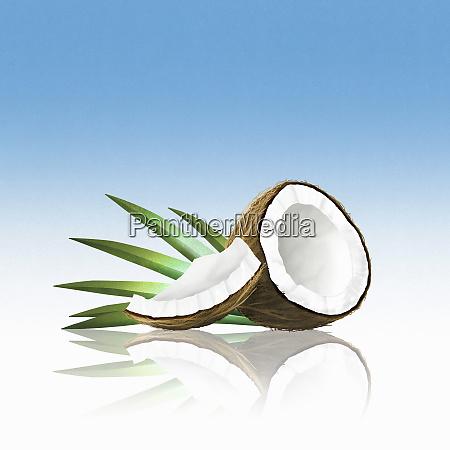 pieces of coconut