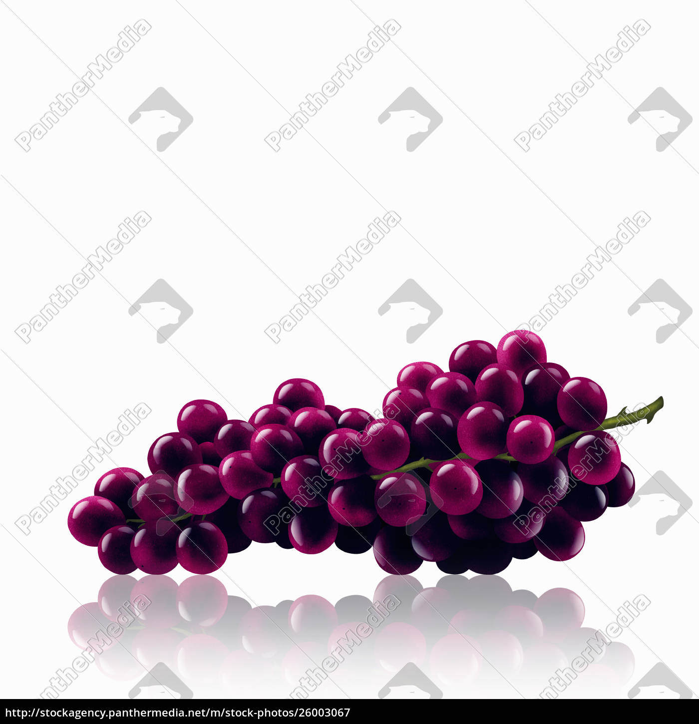 bunch, of, red, grapes - 26003067