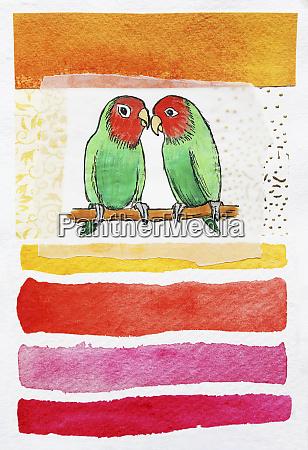 birds kissing on perch
