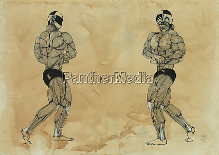 muscles on male bodybuilder