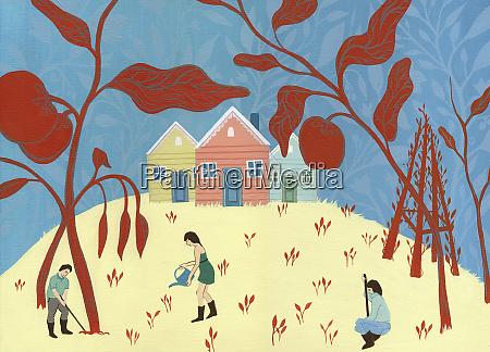 people, tending, to, community, garden - 26004122