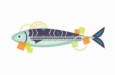 fresh whole mackerel