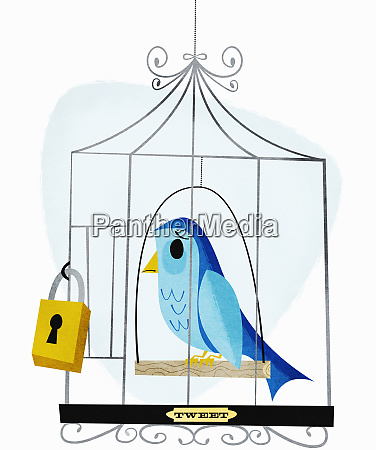 padlock, on, birdcage, with, label, tweet - 26009868