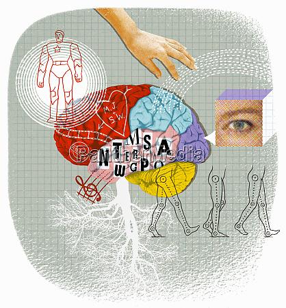 brain activity and creativity