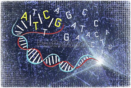 double helix and genetic code