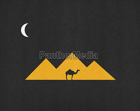 silhouette of camel in front of