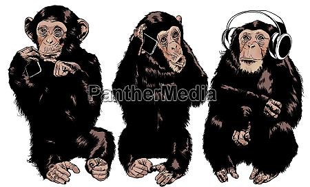 three monkeys see no evil hear
