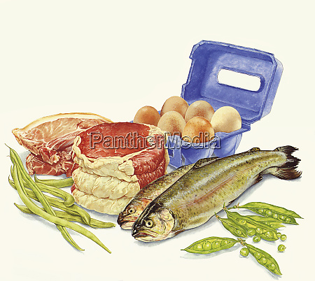 food with protein meat fish eggs