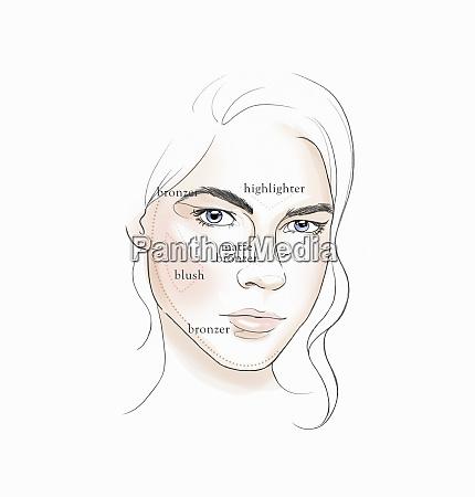 tips for applying makeup in diagram