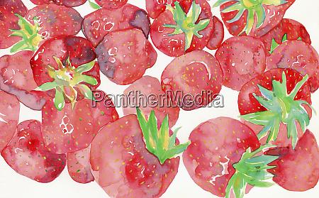 watercolor painting of fresh strawberries