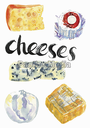 watercolour painting of different cheeses