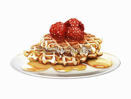 raspberry, waffles, oozing, with, honey - 26021790