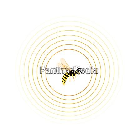 vespa allinterno del reticolo del cerchio