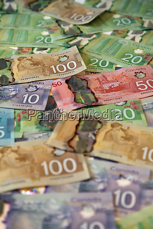 money new canadian polymer bank