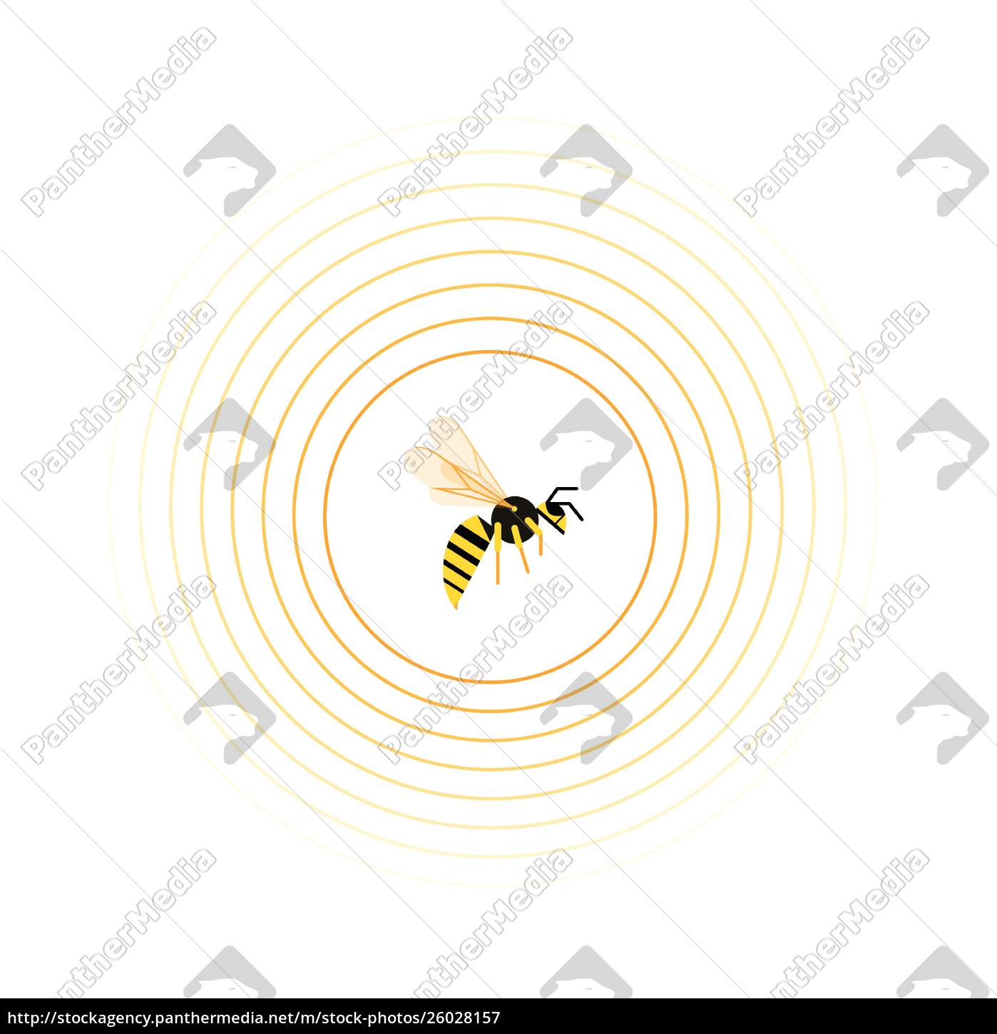 wasp, inside, circle, pattern - 26028157