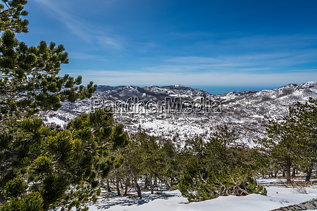 winter landscape in lovcen national park