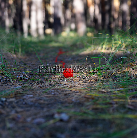 unwound small red ball of wool
