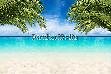 paradise beach background